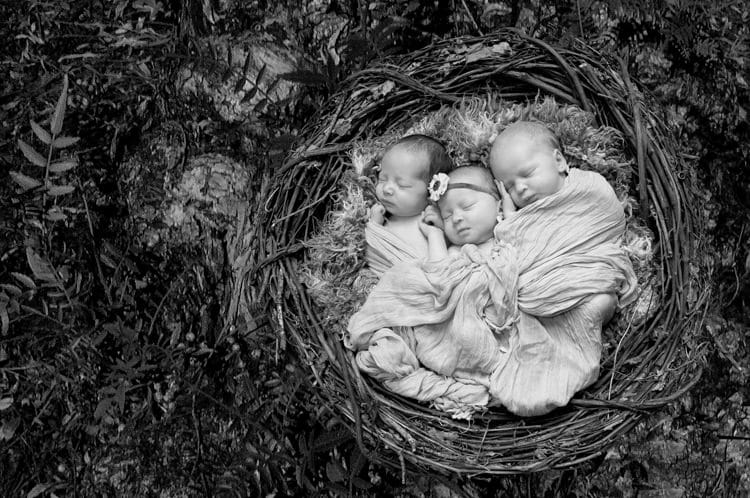 Newborn Triplets Chattanooga Photographer