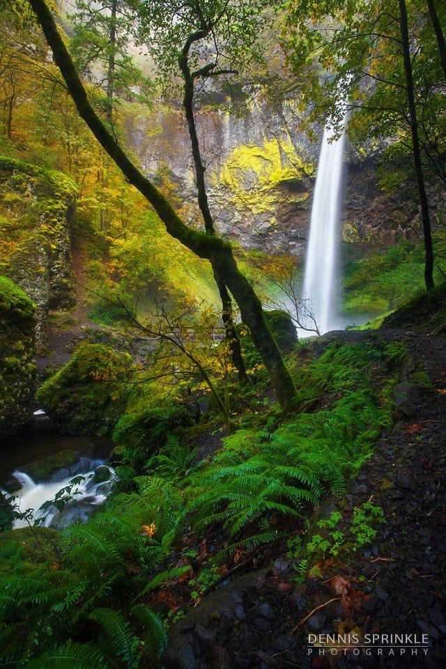 Elowah Falls in Oregon
