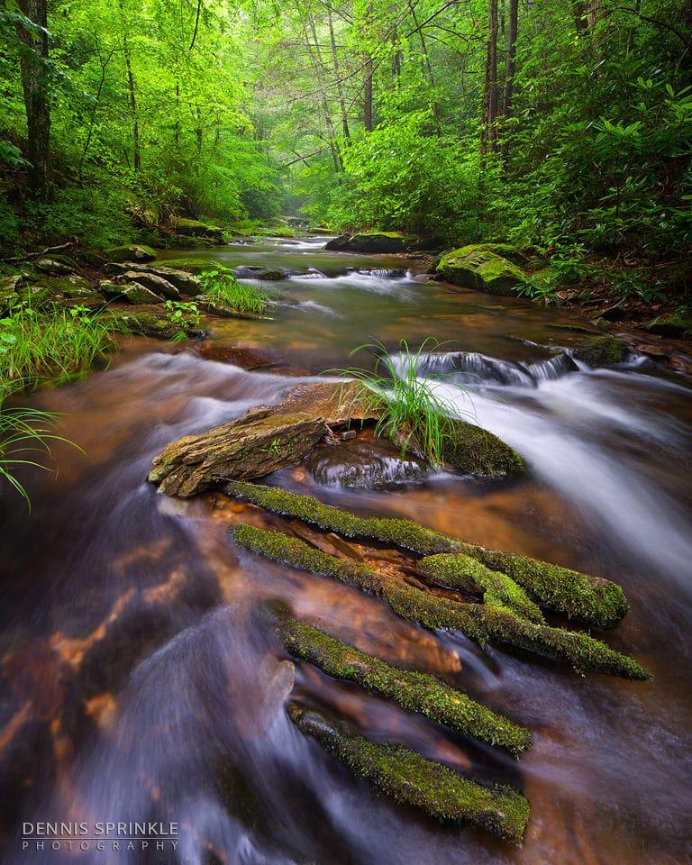 Goforth Creek in Ocoee, TN 2