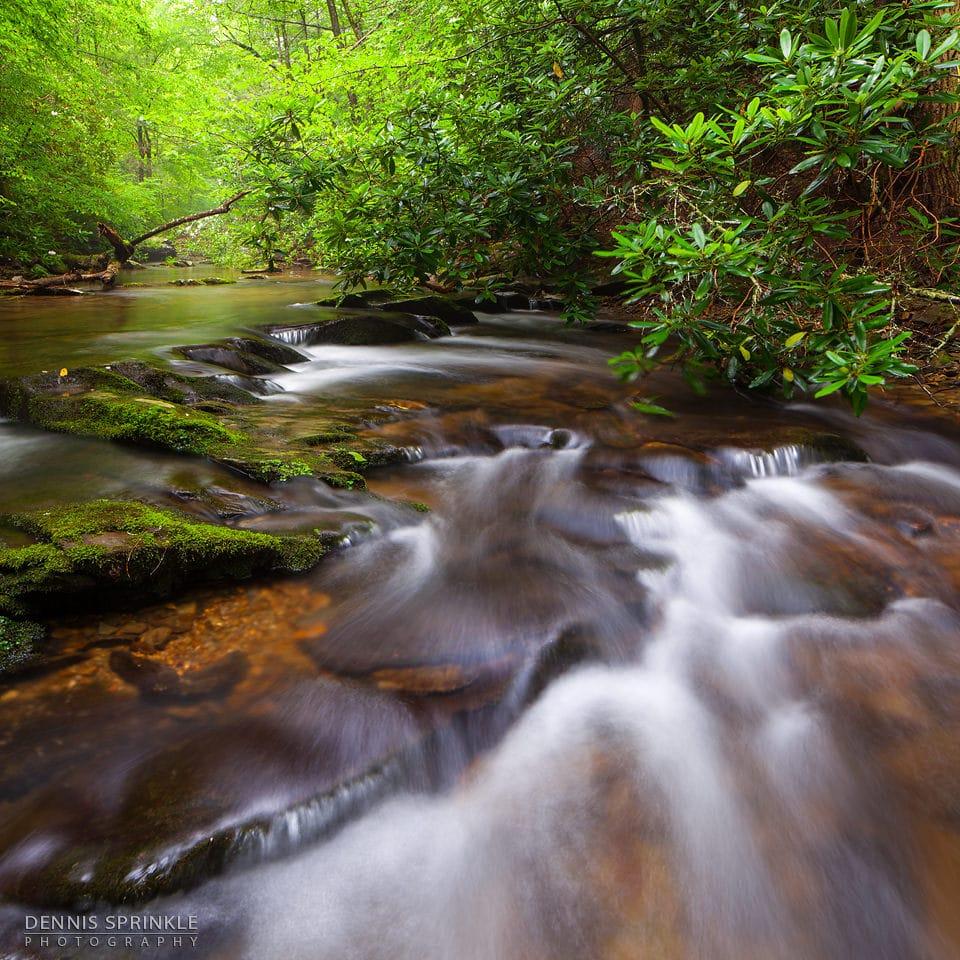Goforth Creek in Ocoee, TN