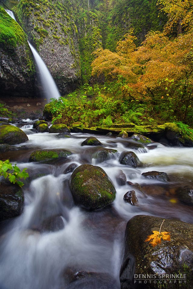 Ponytail Falls in Oregon